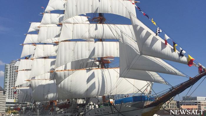 帆船「日本丸」が重要文化財に指定