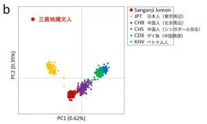 縄文人は東アジア人と比べ、遺伝的に特異な集団だった!