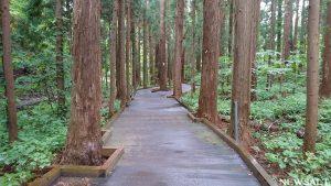 秋の北海道を散策(4)~円山公園~円山動物園