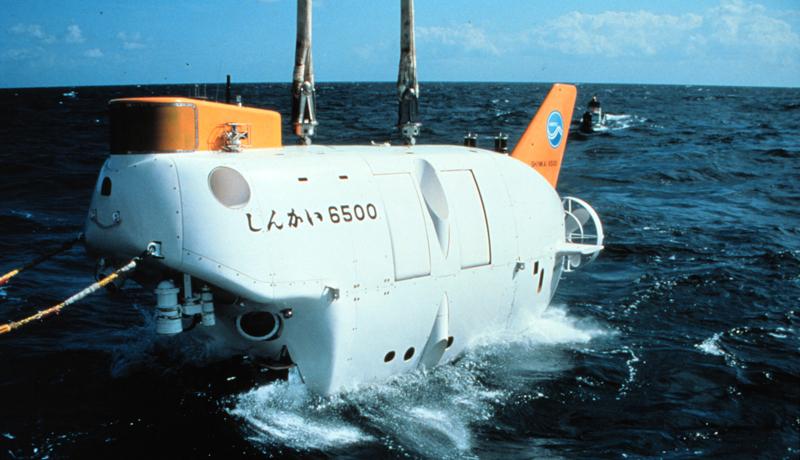 深海のクジラ遺骸に生物群 数千km離れても構成類似