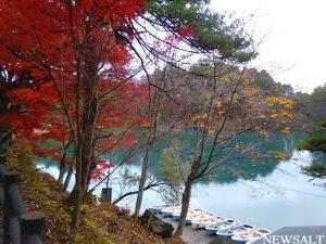五色沼の毘沙門沼はラスト紅葉