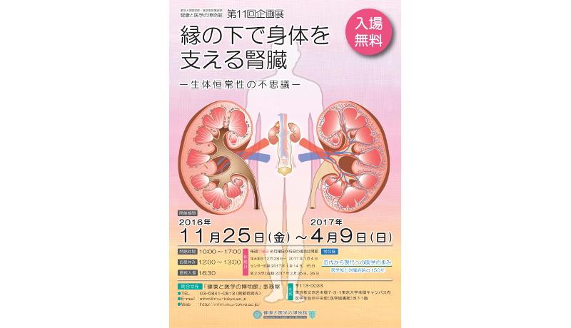 「縁の下で身体を支える腎臓」展を開催 東大