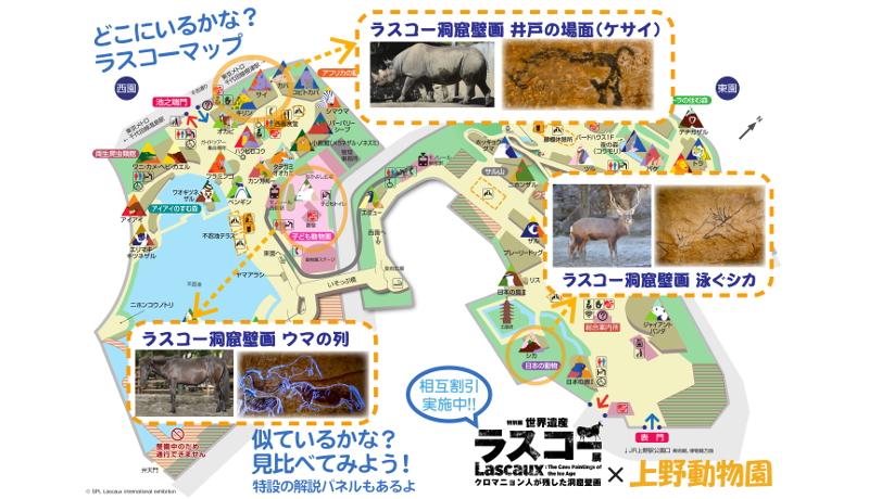 上野動物園、国立科学博物館「ラスコー展」とコラボ