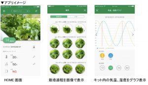 IoTを活用して野菜を作ろう! 水耕栽培キットを販売 沖縄セルラー