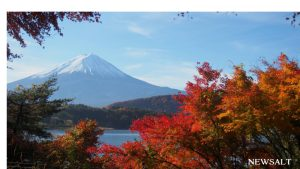 2016年 紅葉便り~紅葉と富士山の絶景を楽しむ河口湖・山梨県