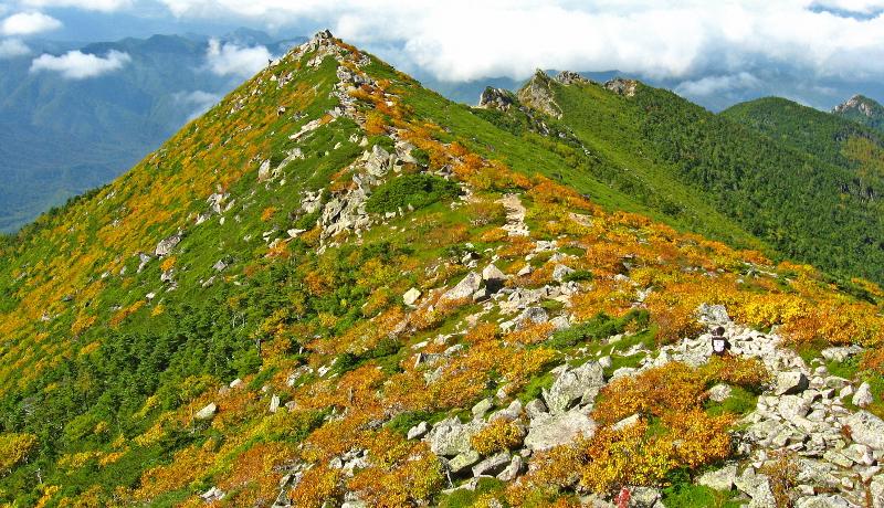 3県10市町村で甲武信水の森ユネスコエコパークの登録を推進