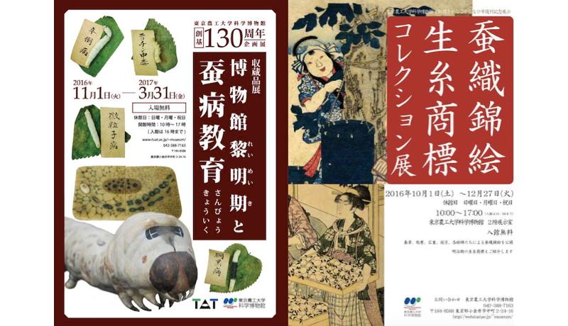 東京農工大学科学博物館が130周年 「養蚕」に関する企画展開催