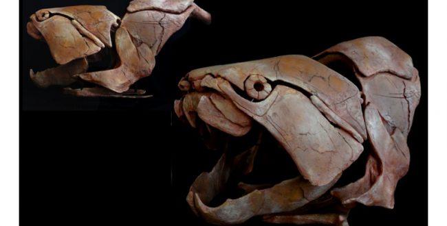 古代魚ダンクレオステウスの頭骨模型を展示 岡山・カブトガニ博物館