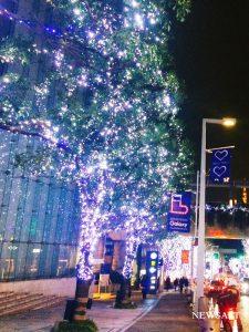 2016年クリスマスの風景~東京・六本木けやき坂
