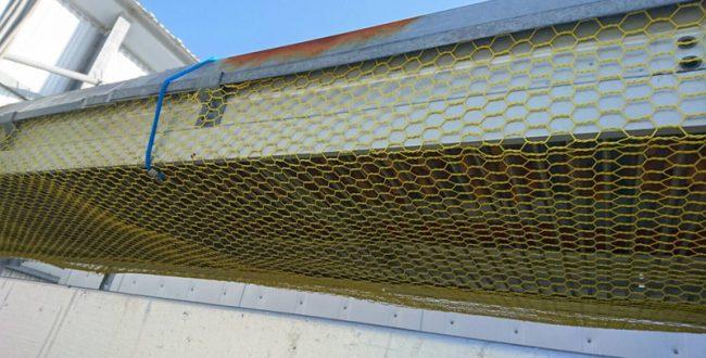 鳥インフルエンザの媒介となるネズミを撃退! 豊橋の町工場が開発