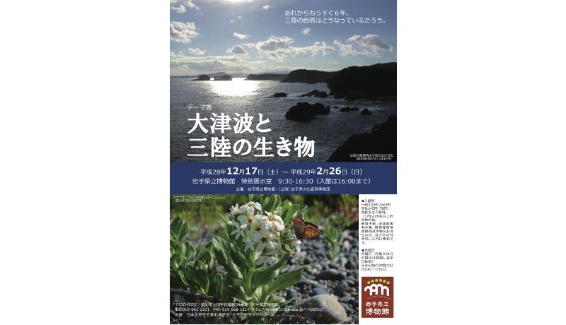 岩手県立博物館が企画展 津波が与えた生態系への影響がテーマ