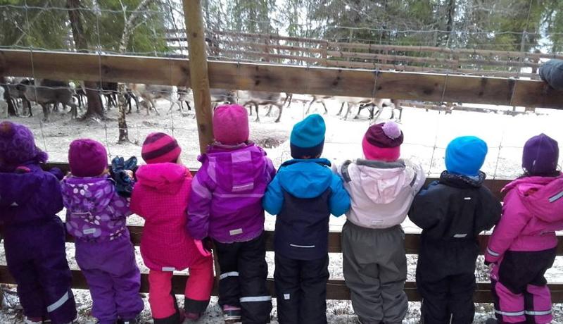 ノルウェーの幼稚園がトナカイの屠畜見学 フェイスブック上で物議
