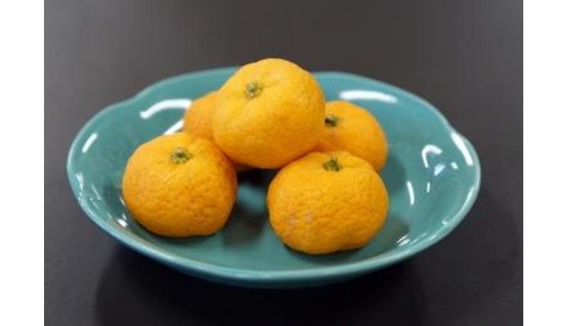 近大医学部奈良病院で「大和橘」を病院食に