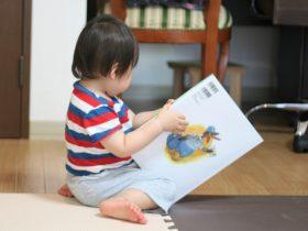子どもの読書意欲を上げる「ぬいぐるみお泊り会」 岡山大学が実験