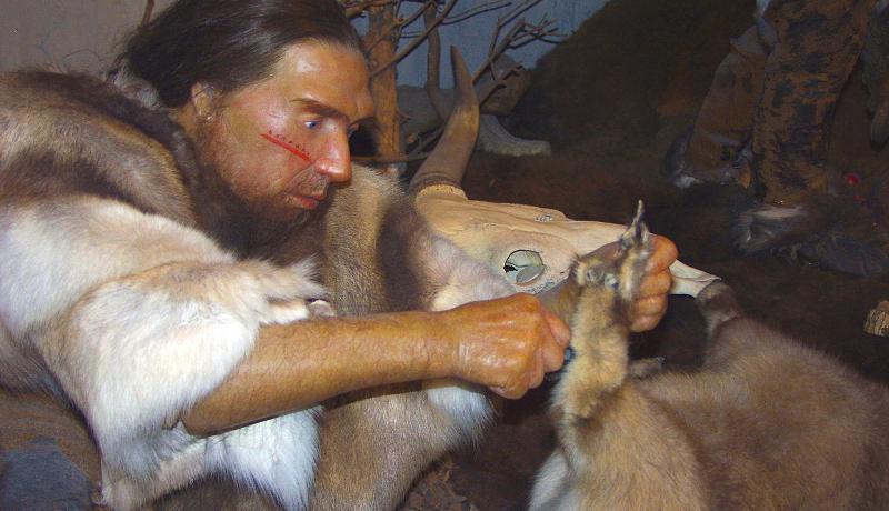 歯石に含まれた古代DNAから描かれる、ネアンデルタール人の暮らし