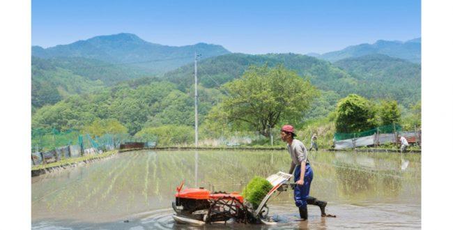 農業技術・研究を見える化 農林水産省がサイトを開設