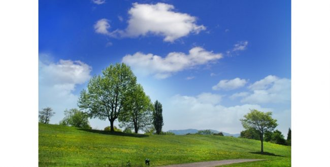 国立公園と生物多様性について考える 5月13日にシンポジウム開催