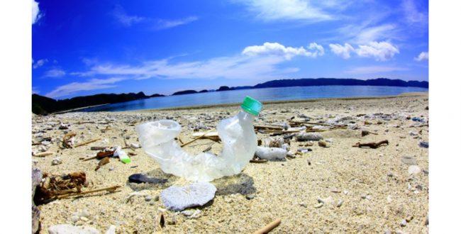 海洋ごみについて考える「出前講座」実施校を募集 環境省