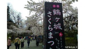 桜特集(11)鶴ヶ城1