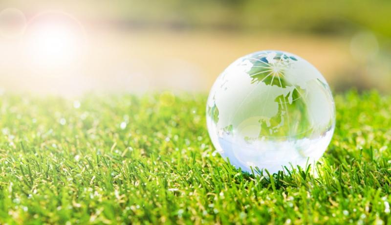 ブリヂストン、持続可能な天然ゴムの調達方針を発表