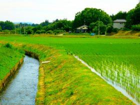 余暇を農山漁村で過ごす「グリーン・ツーリズム」を外国人にPR 熊本県
