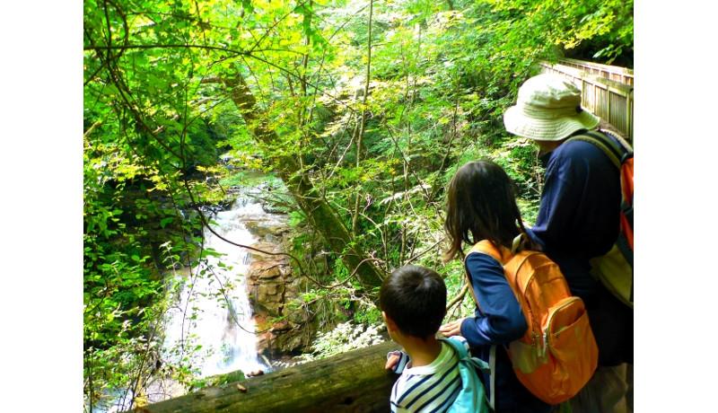 日本屈指の美しい国有林93カ所を選定 林野庁