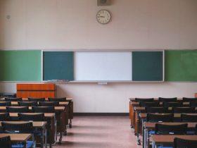 専門職大学・短期大学とは?就職を見据えた新たな教育のかたち