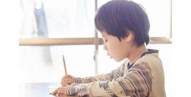 ひらがなを書くリズム 小学1年生の学習過程を神戸大が解明