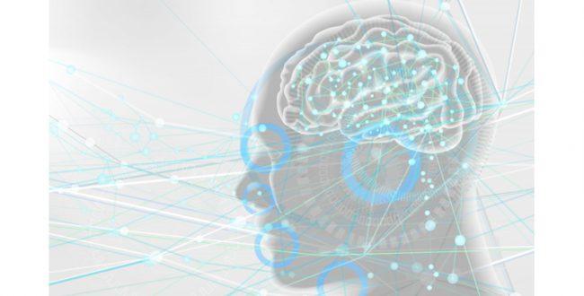 持久力の高さは記憶力向上に関係する 筑波大