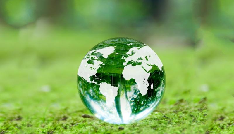 養豚場からの温室効果ガスを8割削減 炭素繊維リアクターで可能に