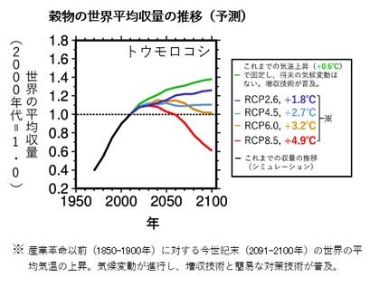 温暖化による気温上昇が穀物の生産性に影響