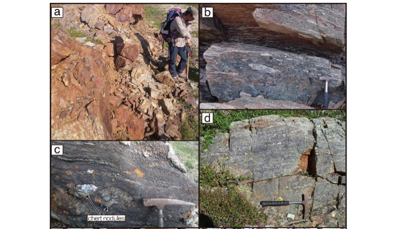 39億5000万年前の生命の痕跡を発見と東大が発表