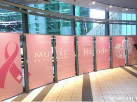 日本女性のがん罹患数トップは乳がん 受診率向上が求められる