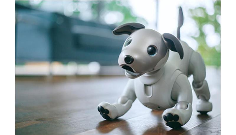 ソニーが「アイボ」を来年1月に再販売 AIを搭載