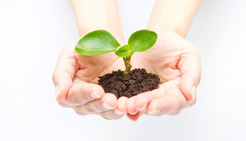 3カ月で約2万1700本の植樹 生物多様性の理解促進 グリーンウェーブ2017 2万1700本を植樹