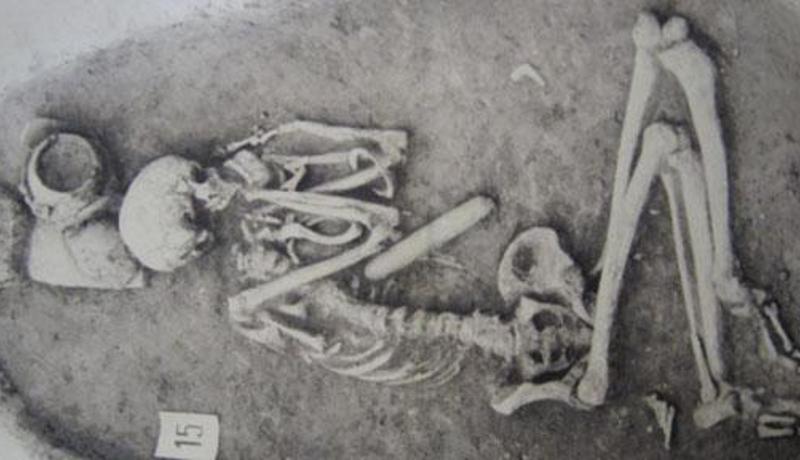 先史時代の女性の腕は、現代のアスリートよりも強くて丈夫だった