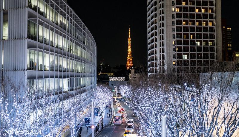 都内各所でイルミネーション 冬空の下で街が輝く