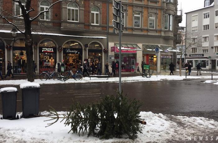 クリスマスツリーを燃料にリサイクル(ドイツ)