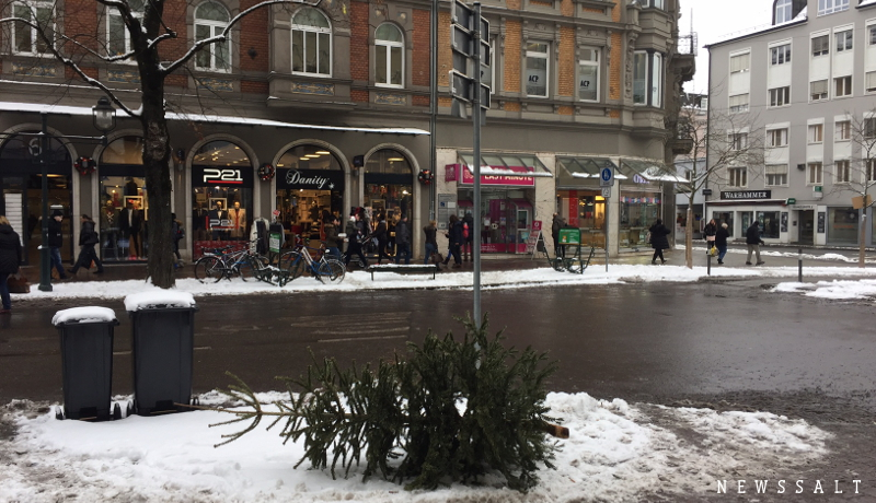 クリスマスツリーを燃料にリサイクリング(ドイツ)