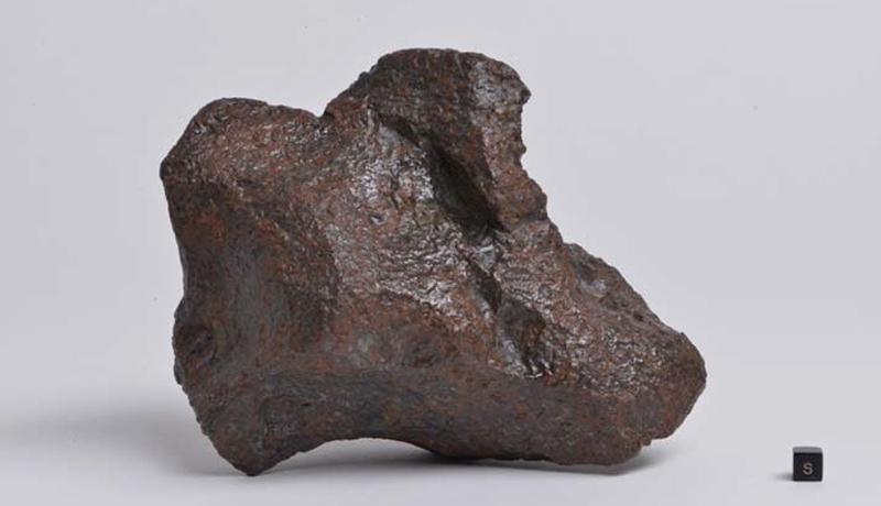 岐阜で国内約15年ぶりの隕石発見 「長良隕石」と命名