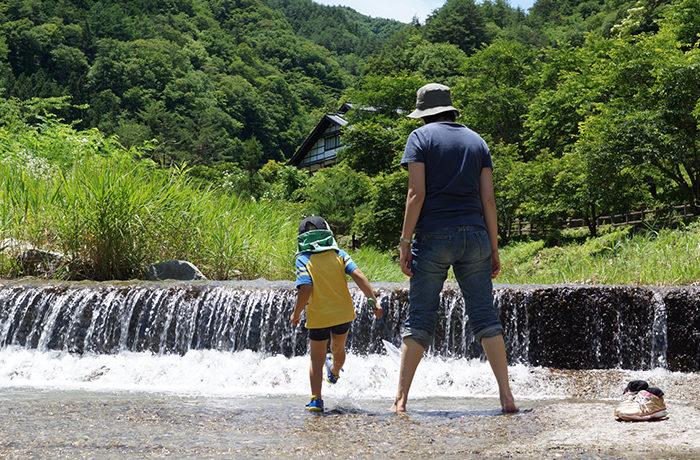 沖縄で「川に住むウミヘビ」を国内初確認