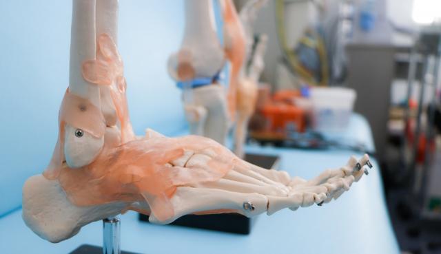 3Dプリンターで人工骨製造 理研・リコー