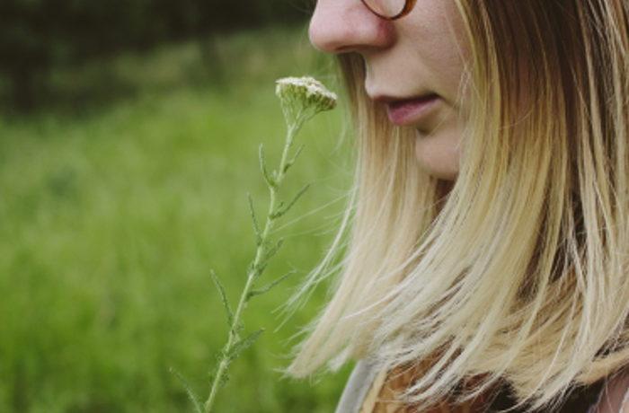 霊長類の「嗅覚依存」から「視覚依存」への移行の謎、解明へ