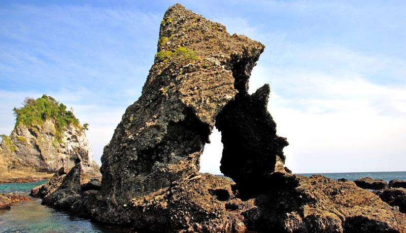 伊豆半島がユネスコ世界ジオパークに認定 環境教育や観光にも活用