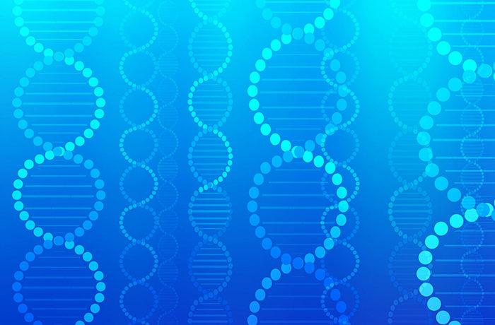 日本人はアルコールに弱い体質に「進化」 ゲノム解析で明らかに