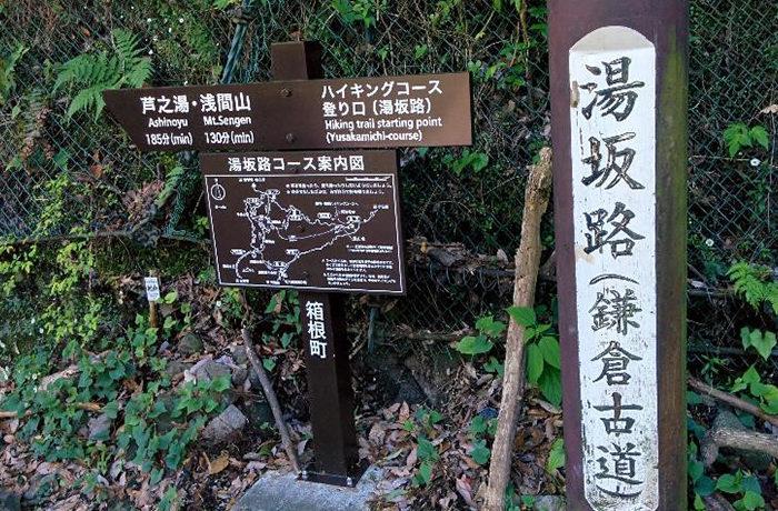 鎌倉古道を歩く 箱根湯本