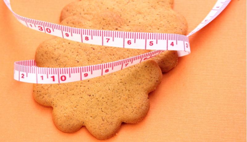 ドイツ肥満問題 「不健康食品に反対する医師の会」が首相に公開状