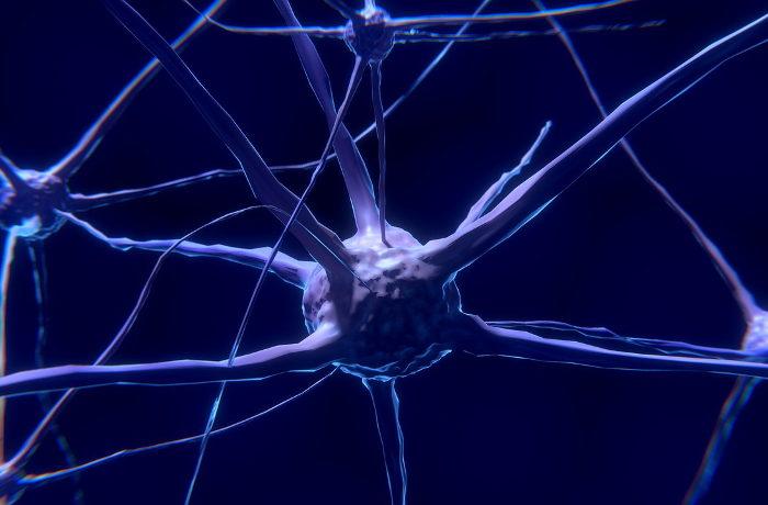 傷ついた神経の再生を助ける「死神タンパク質」新たな治療技術に期待