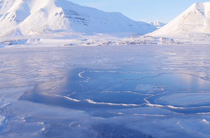 温暖化による生態系変化 植物の化石のデータから予測