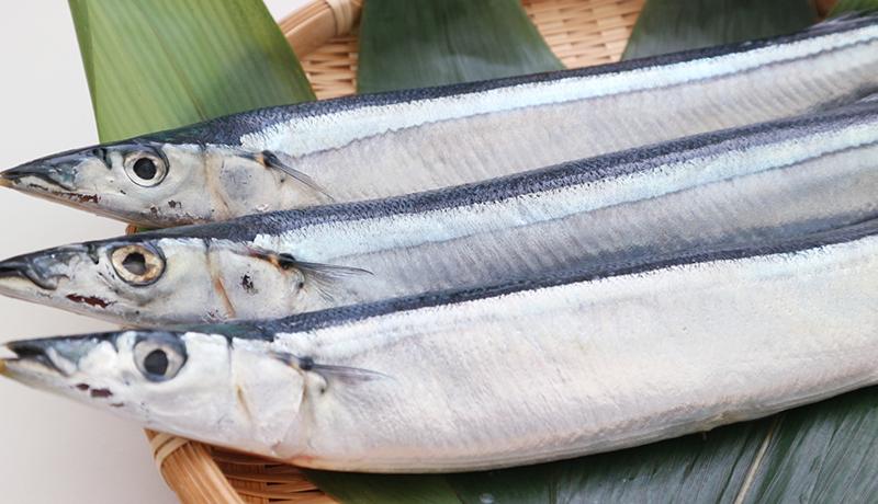 魚をほとんど食べない人の大動脈疾患死亡リスク、約2倍に